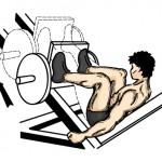 5. Leg Press
