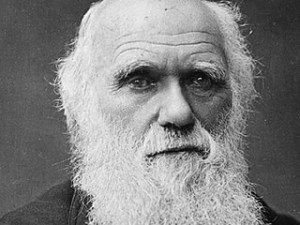 Popular Science Still Regards Evolution as a Theory? A Case Study Among Psychology Masters Graduates