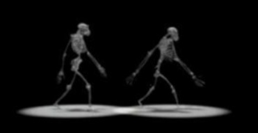 bonobo on the left and australopithecus on the right